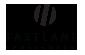 Milestone Medical Services, Inc.